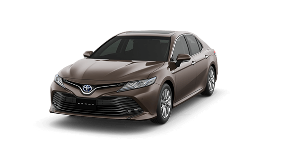 Camry 2019 Ghi - 4X7